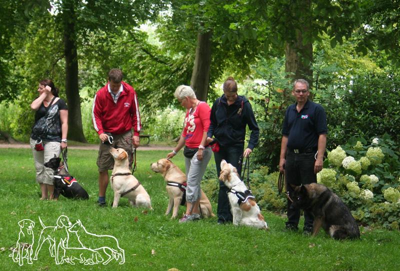 fragen hundeführerschein online