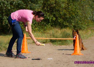 Pfoten-Schule  Crossdogging 001